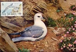 GB.MAN Carte Maximum - Fulmarus Glacialis - Isle Of Man