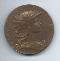 Médaille/République Française/ Ministre De La Guerre/Concours De Tir/Vers   MED30 - Professionnels / De Société