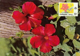 MALAYSIA Carte Maximum - Hibiscus Rosa Sinensis - Malaysia (1964-...)
