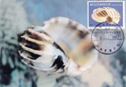 MOZAMBIQUE Carte Maximum - Harpa Major - Mozambique