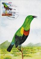 MOZAMBIQUE Carte Maximum - Cimmyris Neegardi - Mozambique