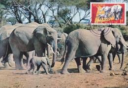 NIGERIA Carte Maximum - Eléphants - Nigeria (1961-...)