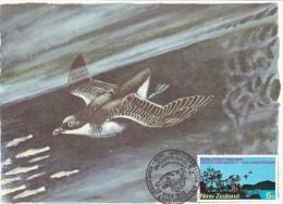 NOUVELLE ZELANDE Carte Maximum - Forêts Et Oiseaux - Cartoline Maximum