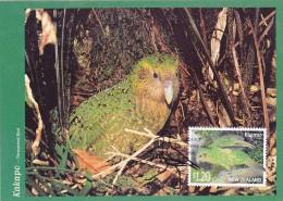 NOUVELLE ZELANDE Carte Maximum - Kakapo - Cartes-maximum
