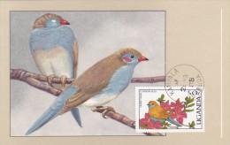 OUGANDA Carte Maximum - Cordon Bleu - Ouganda (1962-...)