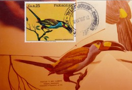 PARAGUAY Carte Maximum - Andigena Laminirostris - Paraguay