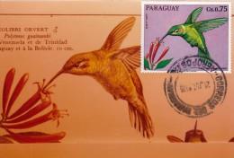 PARAGUAY Carte Maximum - Polytmus Guinumbi - Paraguay