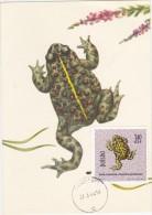 POLOGNE Carte Maximum - Crapaud Jaune - Maximumkarten