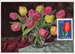 POLOGNE Carte Maximum - Tulipe - Maximumkarten