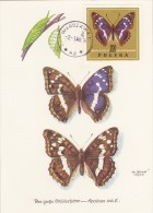 POLOGNE Carte Maximum - Apatura Iris - Maximumkarten