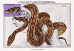 RWANDA Carte Maximum - Python - Autres