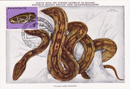 RWANDA Carte Maximum - Python