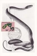 RWANDA Carte Maximum - Dendroaspis