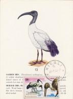 RWANDA Carte Maximum - Ibis