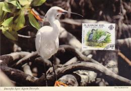 SEYCHELLES ELOIGNEES Carte Maximum - Egretta Sacra - Seychelles (1976-...)