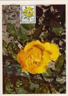 SUISSE Carte Maximum - Rosa Foetida Persiana - Maximumkarten (MC)