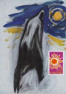 SURINAM Carte Maximum - Le Soleil - Surinam