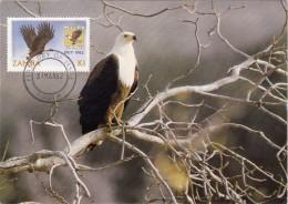 ZAMBIE Carte Maximum - Insigne Et Aigle - Zambie (1965-...)