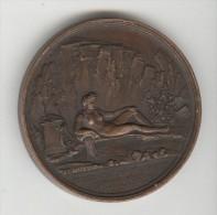 Médaille G. De Stassart - Président De L'Athénée De Vaucluse - 1811 - France
