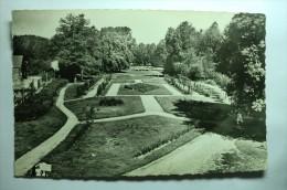 D 54 - Baccarat - Parc De L'hôtel De Ville, La Roseraie - Baccarat