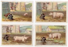 Chromo 4 En Lot Histoire Humour Farce Jeu Cochon Porc Coq Poule Chapeau Ferme Pompe Fontaine Eau Course Poursuite Bêtise - Sin Clasificación