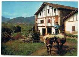 PAYS BASQUE - Ferme Et Attelage Basques - Yvon 3326 -  écrite 1964 - Tbe - Equipaggiamenti