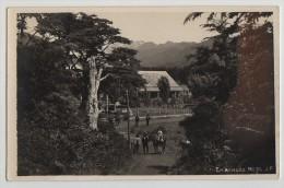 RPPC, HOTEL ON LAKE LLANQUIHUE, HORSES, ENSANADA,CHILE,c1928 - Chile