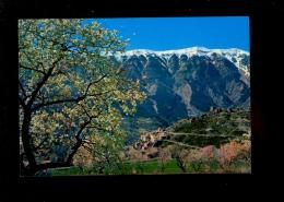 BRANTES Vaucluse 84 : Le Petit Village Dans Les Amandiers En Fleurs Au Pied Du Mont Mt Ventoux - Altri Comuni