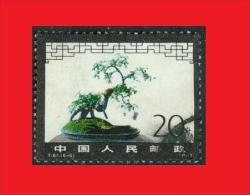 China 1981,  Yv. 2411,  Arbre Nain Bonsai Plaqueminier Sauvage - Végétaux