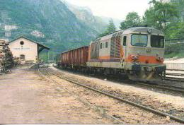 8 FS Treno Merci Per Bassano D.445.1113 Campanè - Valstagno (VI) Rairoad Treain Railweys Treni TCS4 - Gares - Avec Trains