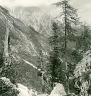Italie Tyrol Du Sud Alpes Montagne Fischleintal Ancienne Photo Stereoscope NPG 1900 - Photos Stéréoscopiques
