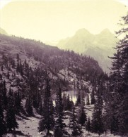 Allemagne Montagnes Bavaroise Lac Schachensee Ancienne Photo Stereoscope NPG 1900 - Stereoscopic