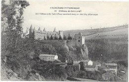 CHATEAU DE SAILLANT - France