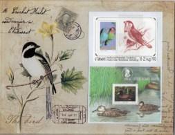 Südafrika Ciskei Bl.8+Transkei Block 9 ** 23€ Ast Vögel Oxyura Puntata Hb Bloc Philatelic Bird Sheet Bf South Africa RSA - Art Africain