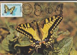 BUTTERFLY, SWALLOWTAIL, CM, MAXICARD, CARTES MAXIMUM, 1989, ROMANIA - Vlinders