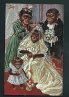 A. Thiele.  Singes Umanisés.  On Habille La Mariée.  T.S.N. Série 844.   Voyagée.    2 Scans. - Thiele, Arthur