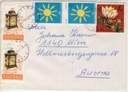Cover POLSKA - Cereus Tonduszii, Cactaceae - Sukkulenten