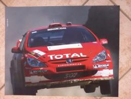 Auto E Moto- Da Calend. M. Marelli - Cm. 39x50-  Peugeot WRC-307 -retro- Ducati M.GP- Desmosedici  GP4. - Sport
