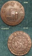 M_p> Gettone / Medaglia BURGVEREIN GOSTING 1925 - 1975 Riproduzione Moneta - Gettoni E Medaglie