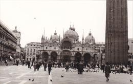 24466  Photo Venize Venezia Itale -Mai 1965 - Saint Marc Place