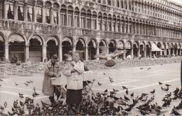 24467  Photo Venize Venezia Itale -Mai 1965 - Saint Marc Place Femmes Pigeon