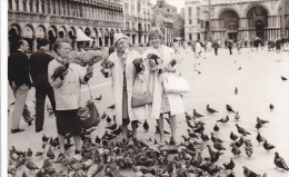 24469  Photo Venize Venezia Itale -Mai 1965 - Saint Marc Place Femmes Belges Pigeon