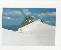 93751 Svizzera Suisse Canton Vaud Glacier Des Diablerets Et Scex Rouge - VD Vaud