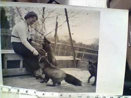 3 CARD  VOLPI FOX ARGENTATE ALLEVAMENTO BOLZANO E IN LIBERTA FOTO GREGORI V1960 EY4544 - Animaux & Faune