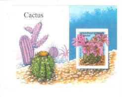 Hb-185 Camboya - Cactus