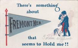 Nebraska Fremont Pennant Series - Fremont