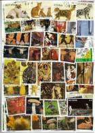 GUYANA Lot De 100 Timbres Tous Differents Neufs Et Oblitérés.(lire La Description) - Guyane (1966-...)