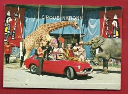 FXE-17  Photo Pub Du Cirque National Suisse KNIE, Girafe, éléphant,clown, Signature Fredy Knie,Cachet  1970 - Circo