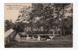 Sept15  2770644    Lyons La Forêt  Prairie De La Ferme - Lyons-la-Forêt