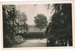 Muizen, Zicht Op Het Park Van Het Kasteel Planckendael (pk21898) - Malines